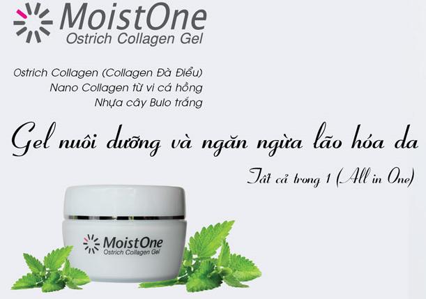 Tác dụng tuyệt vời từ các thành phần có trong Gel Collagen MoistOne