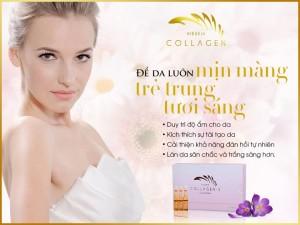 Tinh chất collagen s vieskin 2