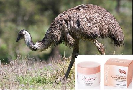 Kem dưỡng da tinh dầu đà điểu Emu Oil Cream Careline