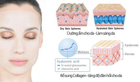 Bổ sung collagen & HA bằng mặt nạ Moisture Rich Mask