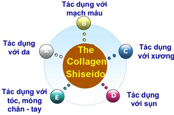 Tác dụng của Collagen đối với cơ thể người