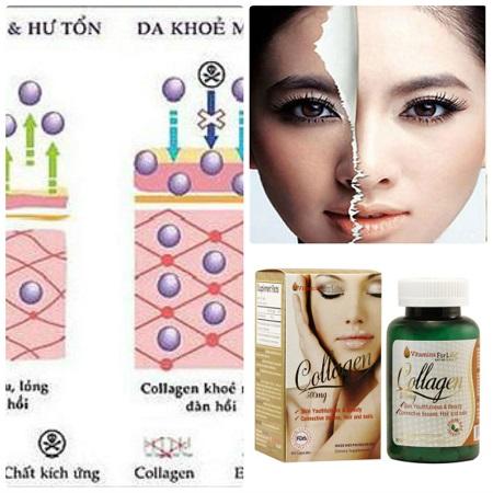 Collagen 500mg bổ sung collagen chống lão hóa da hiệu quả