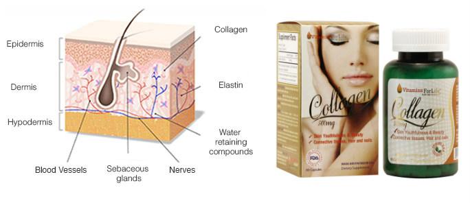 Collagen 500mg-  Chăm sóc sắc đẹp chị em phụ nữ