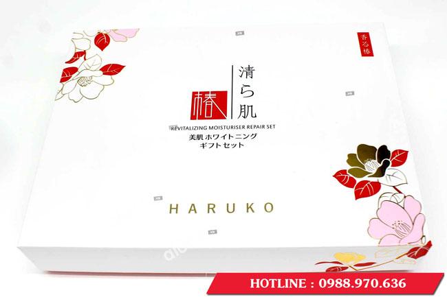 bo-my-pham-haruko-5