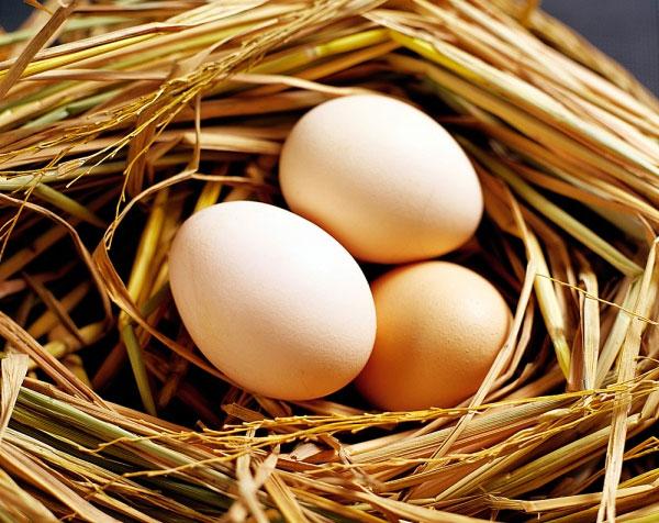 Trị tàn nhang bằng dầu oliu và trứng gà