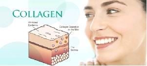 TOP 5 Loại Collagen Tốt Nhất Hiện Nay Được Nhiều Người Tin Dùng